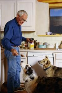 Is Your Pet an Estate Asset?